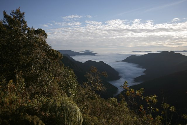 A view during the Bolivia Sky Race in Chuspipata, about 50 km (31 miles) northea