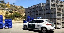 Dos detenidos y dos investigados por la sustracción de más 15.000 kilos de naranjas