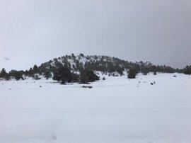 Previsión de nevadas en León y Zamora para este miércoles