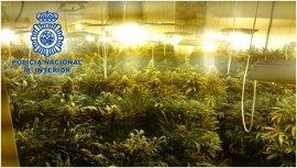 Abortada en Granada la venta de 31,5 kilos de marihuana y detenidas cinco personas implicadas en la transacción