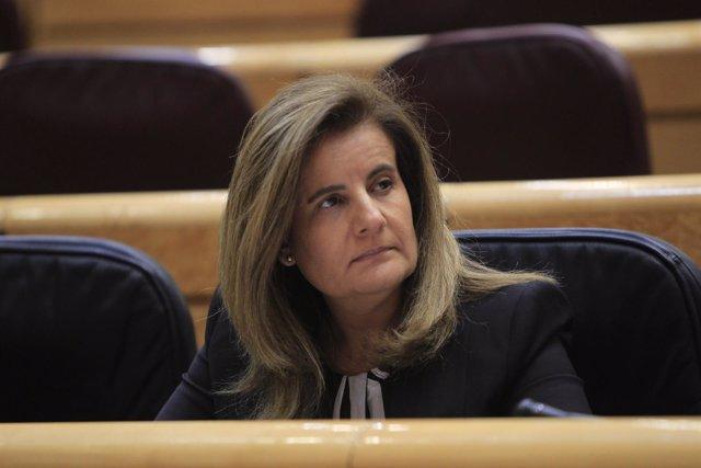 Fátima Báñez en el Senado