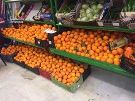 Detenidas 23 personas por robar más de 50.000 kilos de naranjas en fincas de Sevilla