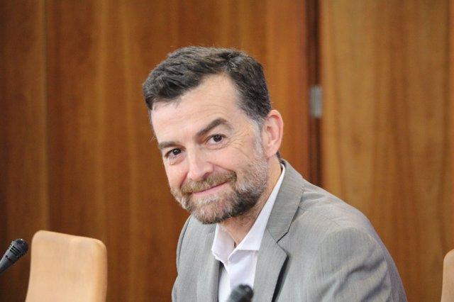 El coordinador general de IULV-CA y portavoz en el Parlamento, Antonio Maíllo