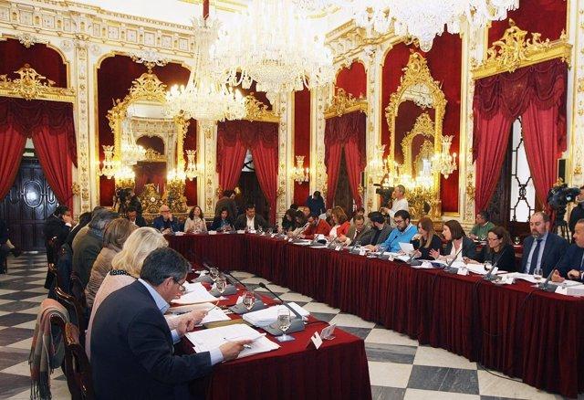 Pleno de la Diputación Provincial de Cádiz