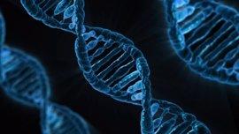 Descubren las primeras mutaciones en la vida humana