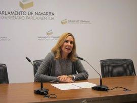 """Beltrán reclama la dimisión de Ollo por """"mentir"""" en la Cámara sobre los invitados al acto de víctimas de extrema derecha"""