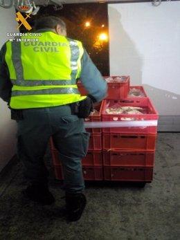 Mercancía transportada en interior furgón frigorífico