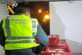 Detenidos dos empleados de un matadero de Zuera tras hurtar carne y un furgón frigorífico