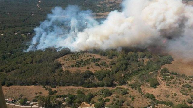 Incendio forestal en San Roque (Cádiz)
