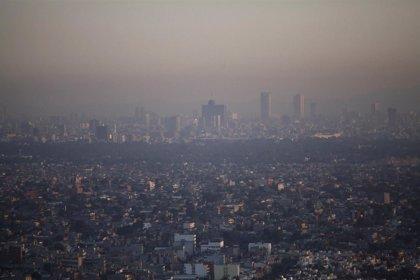 Cuanta más contaminación, más casos de rinosinusitis crónica