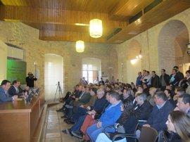 Diputación  informa a alcaldes y técnicos sobre cómo elaborar y presentar proyectos del PFEA