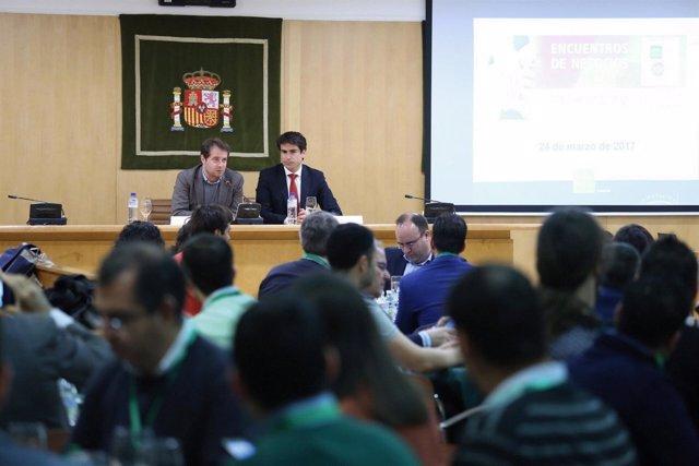 Encuentro de negocios celebrado en la Diputación de Sevilla