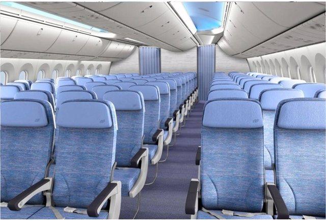 Air europa cobra desde cuatro hasta 50 euros por elegir for Interior 787 air europa