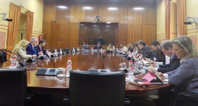 Defensor del Pueblo Andaluz en la Comisión de Igualdad y Políticas Sociales.
