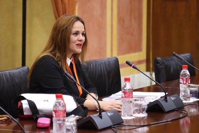 Barbero comparece en el Parlamento de Andalucía