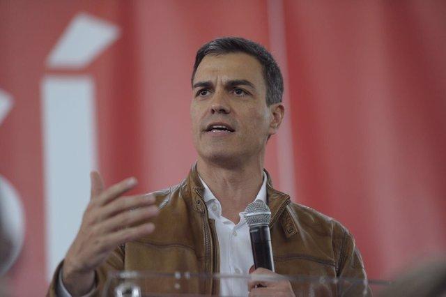 El candidato a las primarias del PSOE, Pedro Sánchez, en un acto
