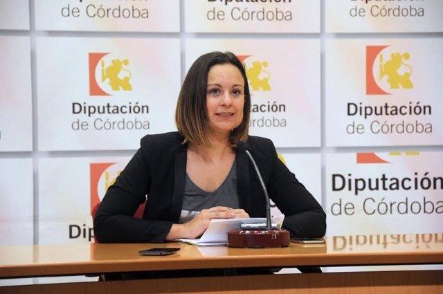 Guijarro presenta la convocatoria de subvenciones