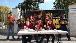 Dos jóvenes citados por la Audiencia Nacional por quemar fotos del Rey en Palma no acuden a declarar