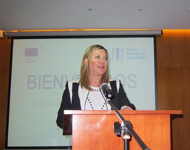 Del Olmo en el  seminario 'Plan de Inversiones para Europa'