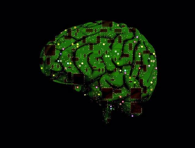 Cerebro, chip informático