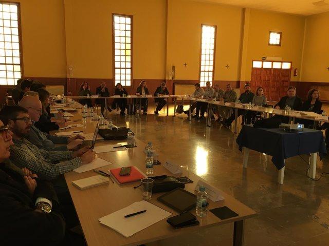 Comisión Asesora 'Smart Island'