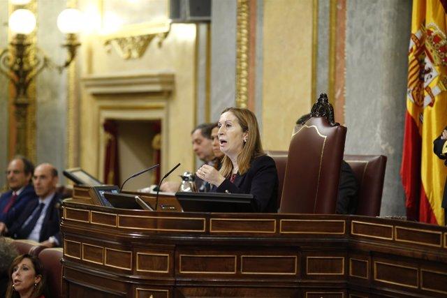 Ana Pastor hablando en el Congreso