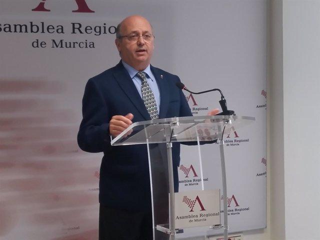 El diputado de Ciudadanos, Luis Fernández, en rueda deprensa en Asamblea
