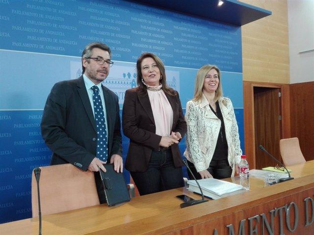 Torrico, Crespo y Ruiz-Sillero en rueda de prensa