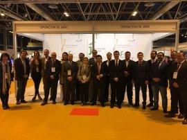 Dieciséis empresas jiennenses muestran sus aceites en la World Olive Oil Exhibition junto a Diputación