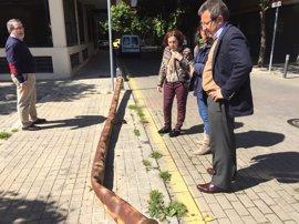 """El PP alerta del """"grave abandono de Bami"""" y exige a Espadas que acometa el plan aprobado en el pleno"""