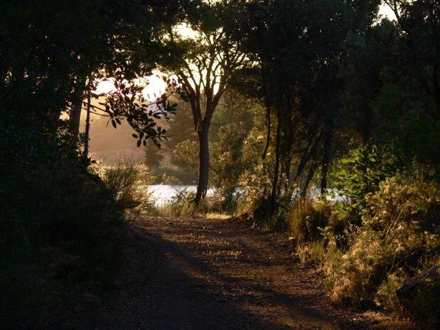 Camino de las Hazadillas en el Parque Natural de las Lagunas de Ruidera