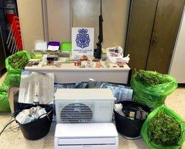 14 detenidos tras desmantelar un inmueble dedicado producir y vender marihuana y hachís