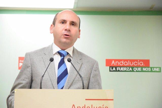 Francisco Conejo PSOE-A Málaga socialista política institucional secretario