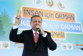 """Erdogan pide a Tillerson que apoye a los """"legítimos"""" actores en la lucha contra el terrorismo en Siria"""