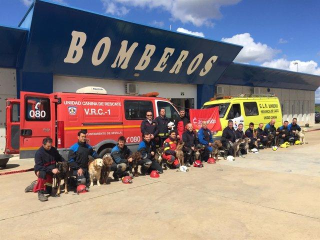 Bomberos homologan las pruebas de perros de rescate.
