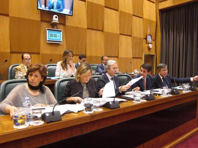 Grupo municipal del PP en el pleno del Ayuntamiento.