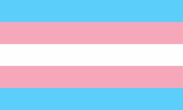 Bandera Transexual