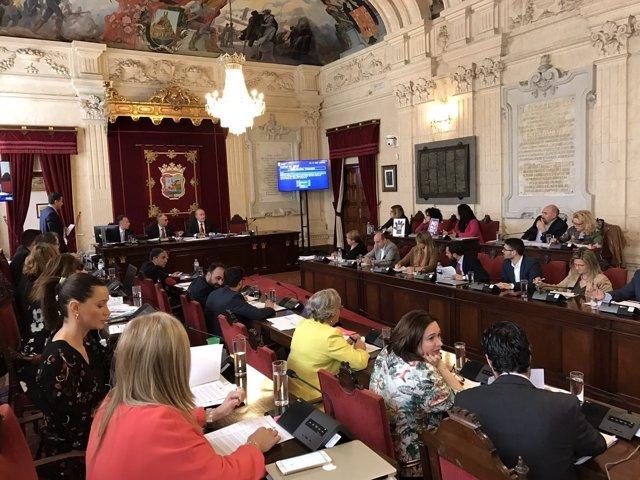 Pleno del Ayuntamiento de Málaga. Marzo 2017
