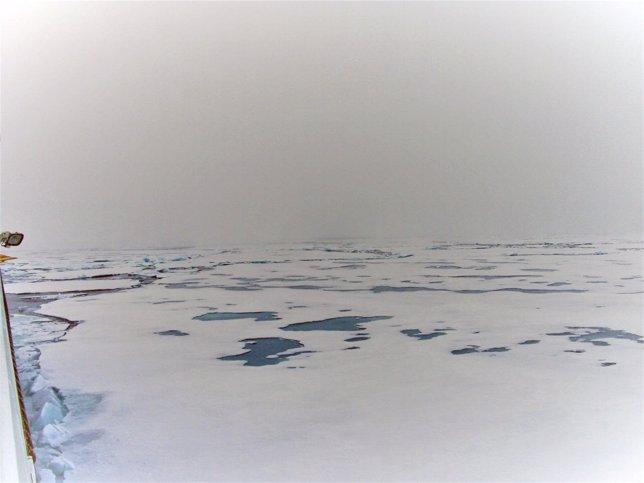 Charcas de agua salpican vastas áreas en el océano Ártico