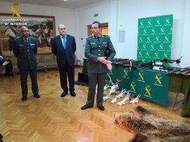 Desarticulado un grupo criminal de caza furtiva que actuaba en Teruel y Guadalajara