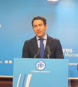 Teodoro García