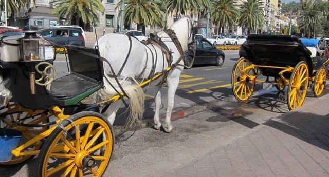 Coche de caballos, calesa, caballos,