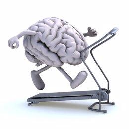 Cerebro sano