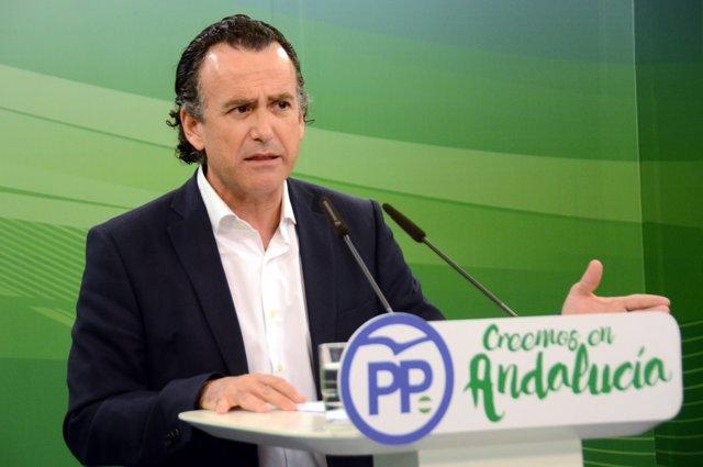 El vicesecretario general de Sectores Productivos del PP-A, Pablo Venzal
