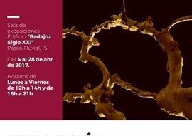 Una exposición muestra en Badajoz obras de Zacarías Calzado, Guadalupe Durán y Rodrigo Espada