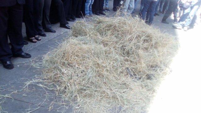 Protesta de la MUD en la sede del TSJ
