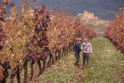 Sentir el viñedo, el mejor viaje con niños en Semana Santa