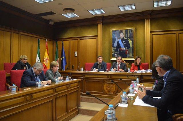 El Consejo Rector del IEA se ha reunido para aprobar la línea de trabajo 2017.