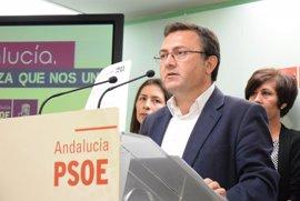 """Heredia critica que Rajoy """"vuelva a situar a Málaga a la cola"""" en inversión con un """"mísero 1%"""" del total"""