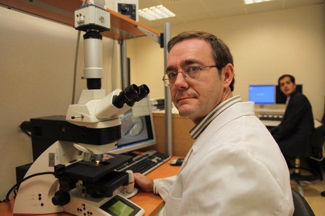 Investigadores CIBIR sobre tratamiento cáncer de colon